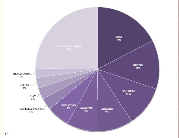 2010 pie chart